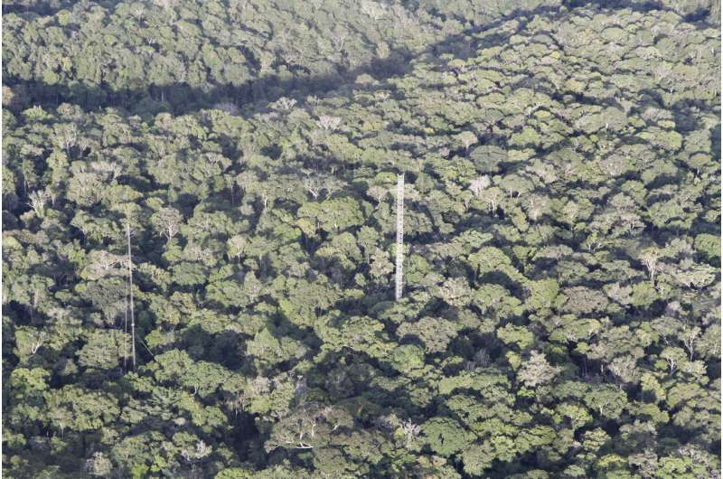 Unchecked climate change will cause severe drying of the Amazon forest