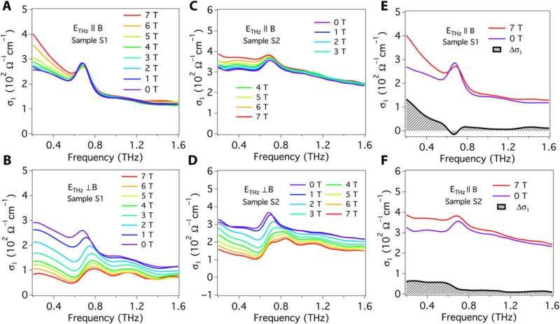 Understanding the charge pumping and relaxation of the chiral anomaly in a Dirac semimetal