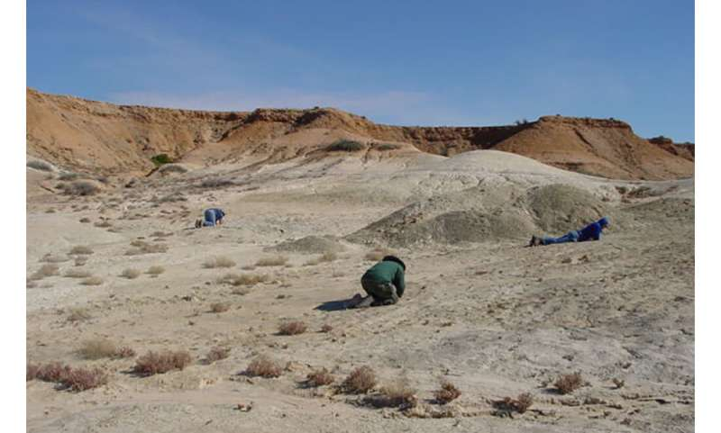 Unearthing ancient Australia winds back the clock millions of years
