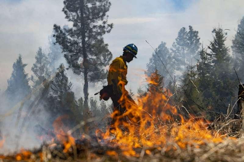 University of Montana students lead prescribed wildfire burn on university ranch
