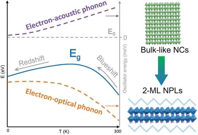 Unusual bandgap renormalization in 2D inorganic lead-halide perovskite nanoplatelets