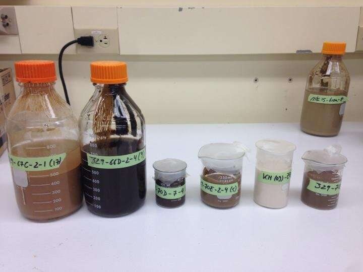 URI researchers: Microbes deep beneath seafloor survive on byproducts of radioactive process