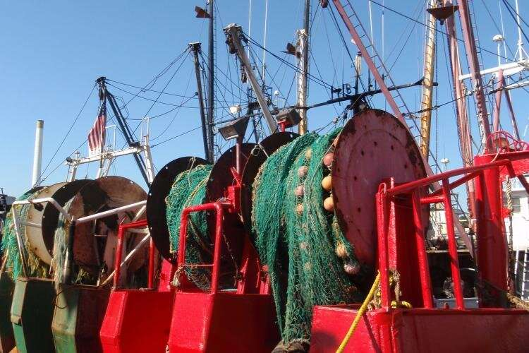 US fishing and seafood industries saw broad declines last summer due to COVID-19
