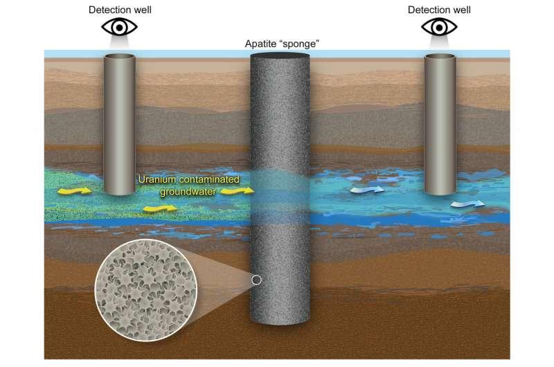 Using a mineral 'sponge' to catch uranium