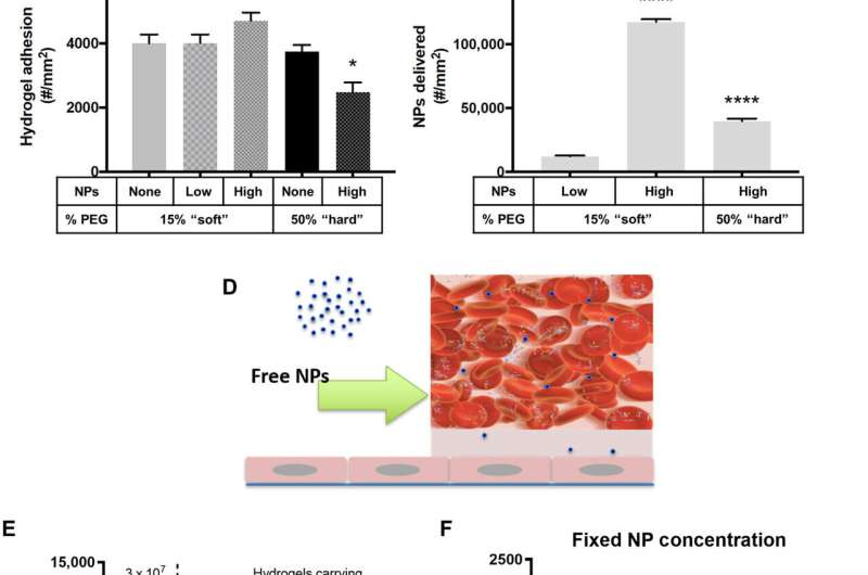 Using flexible microparticles as drug carriers to shuttle nanoparticles to the vascular wall