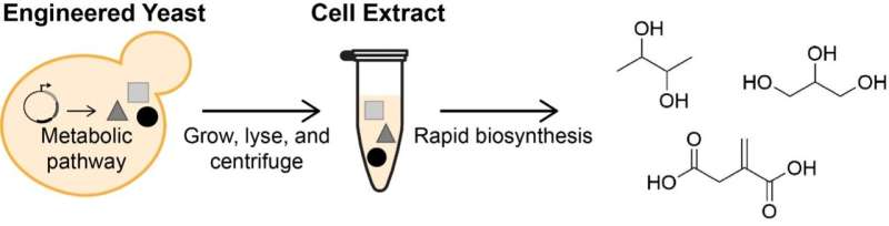 Using yeast to create alternative petrochemical processes