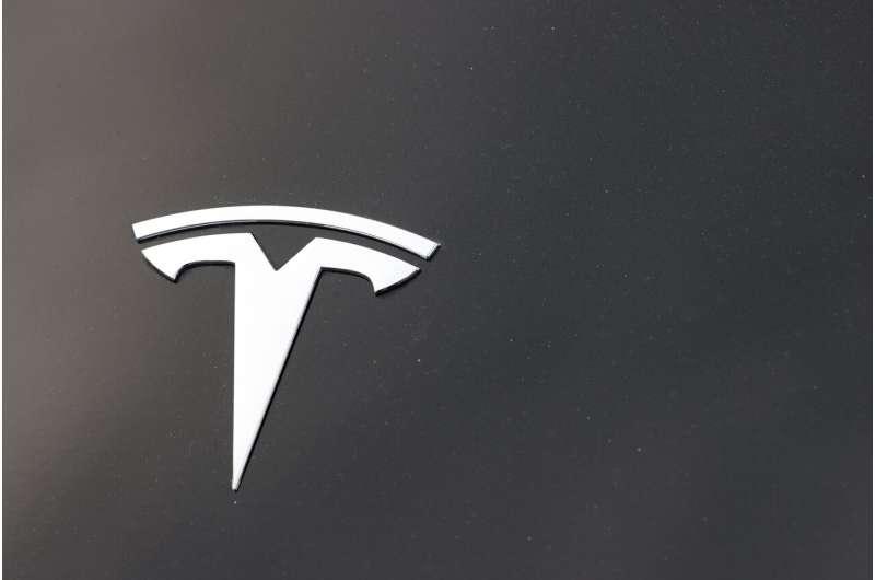 US sends investigators to probe another Michigan Tesla crash