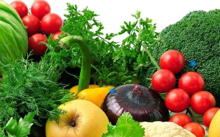 Vegan diets in children may bring heart benefits but pose growth risks