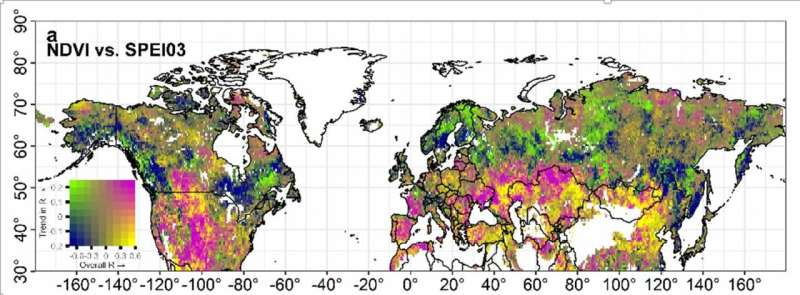 Vegetation growth in Northern Hemisphere stunted by water constraints in warming climate