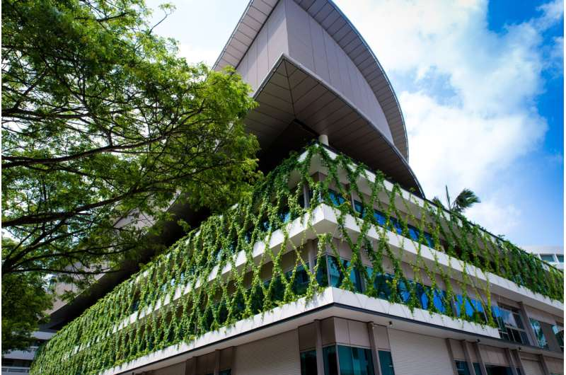 Vertical greenery can act as a stress buffer, study finds