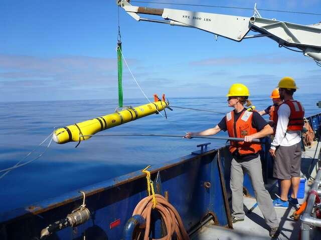 Vertical migration timing illuminates importance of predator pressure in the ocean's twilight zone