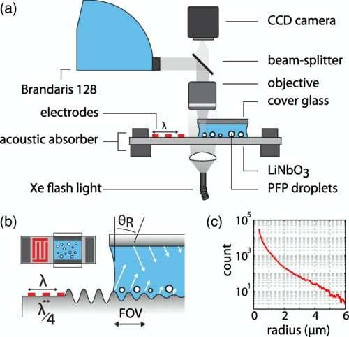 Vibrating nanodroplets may invade a tumor