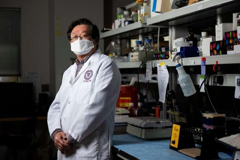 Virologists develop broadly protective coronavirus vaccines