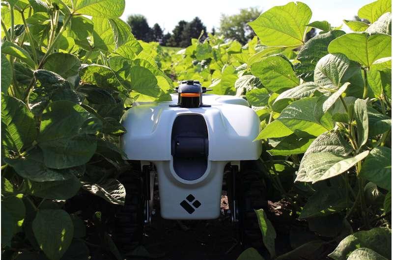 Visión para agricultura de ultra precisión: aprendizaje automático, detección de plantas, robots que atienden cultivos