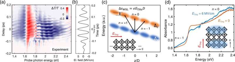 Wannier-Stark localization achieved in polycrystals