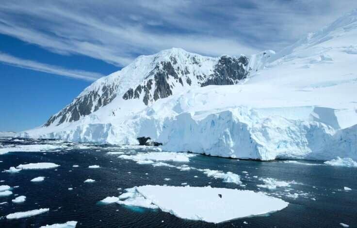 Warming Western Antarctic Peninsula waters impact plankton community