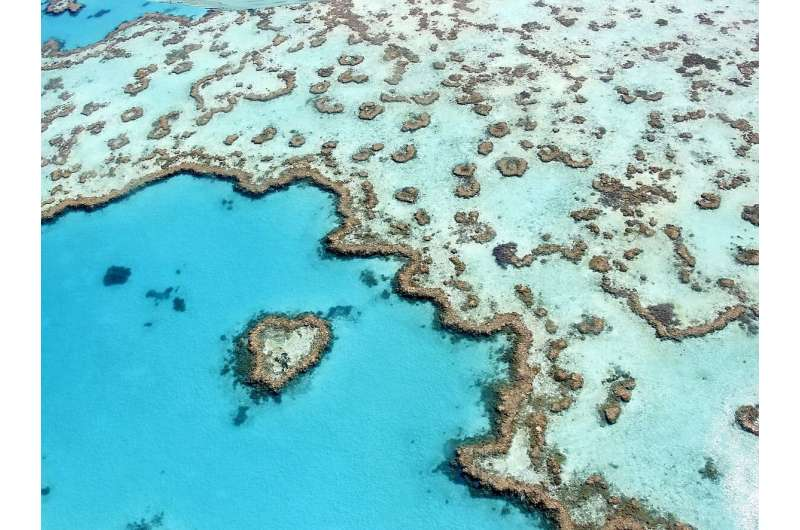 Warming and acidification form dual threat to corals