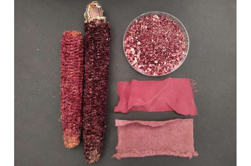 Waste from making purple corn chips yields a natural dye, supplements, kitty litter