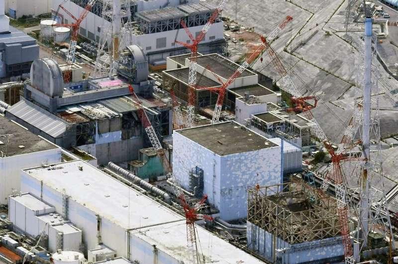 Water leaks indicate new damage at Fukushima nuclear plant
