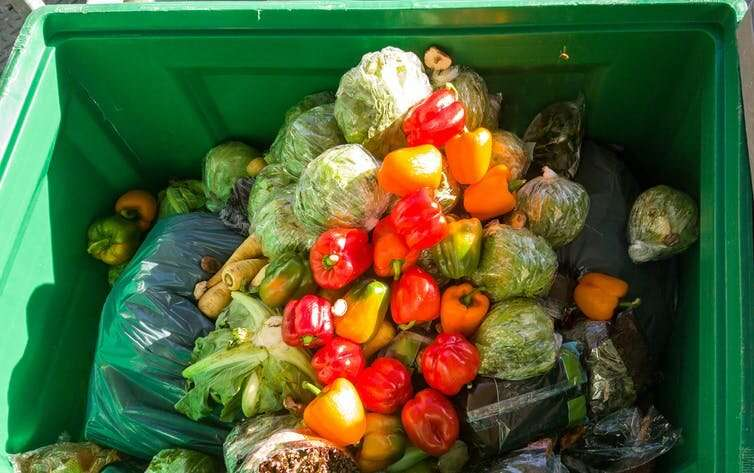 We throw away a third of the food we grow – here's what to do about waste