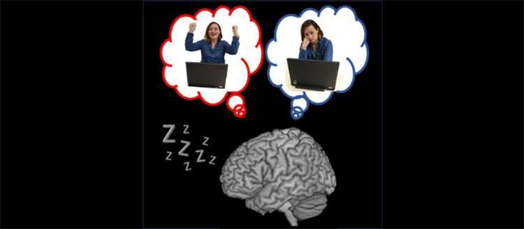 What does the sleeping brain think about?
