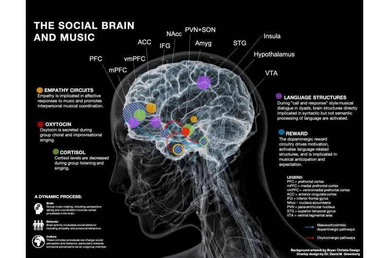 What happens in the brain when people make music together?
