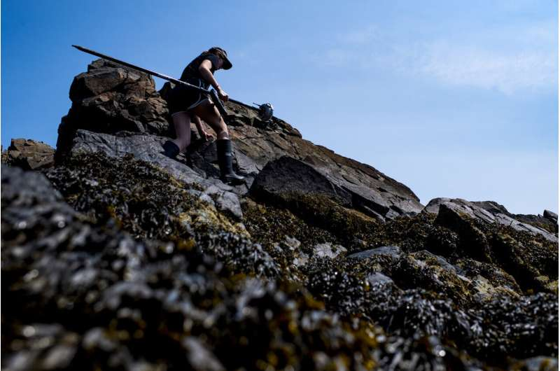 When a heat wave comes, this scientist takes a shellfish's perspective