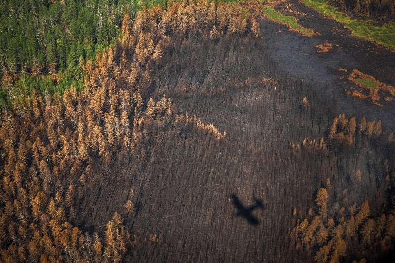 While large wildfires are an annual occurrence in Siberia, the blazes have hit Yakutia with an increasingly ferocious intensity