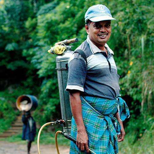 WHO 'needs to act' on suicides caused by pesticides