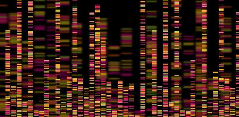 Why rapid genome sequencing is key to finding out how long delta has been in NZ, and how large this outbreak might be