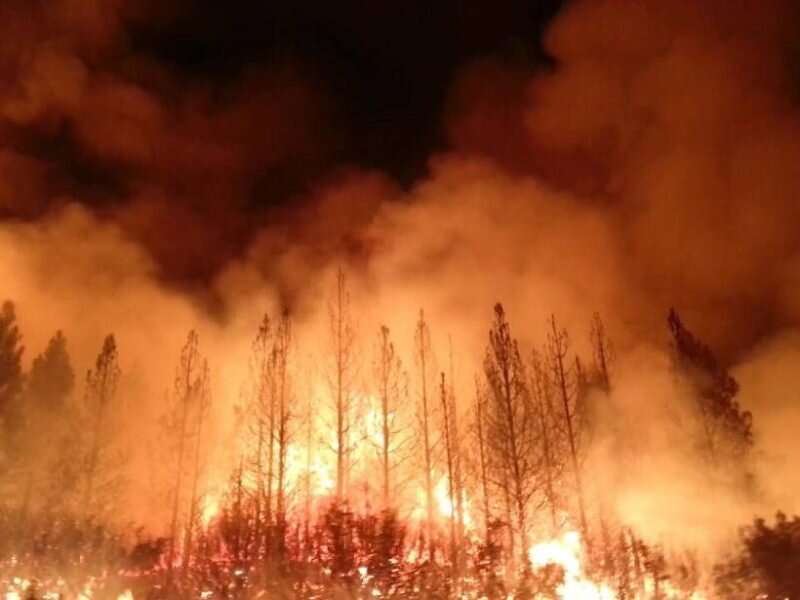 Widespread wildfire as a proxy for resource strain