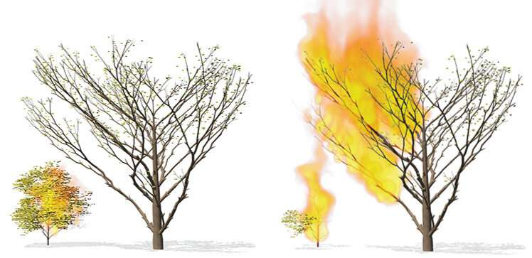 Wildfire simulation heats up