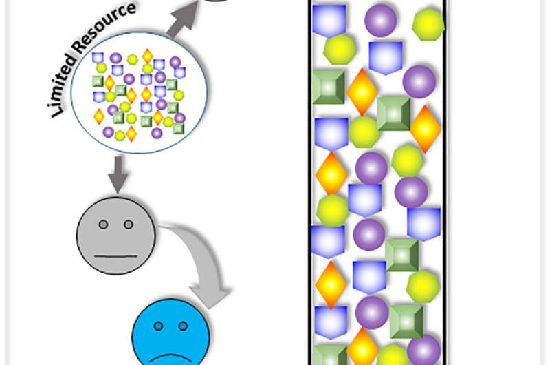 Winner-takes-all synthetic gene circuit process opens new pathways to disease treatment
