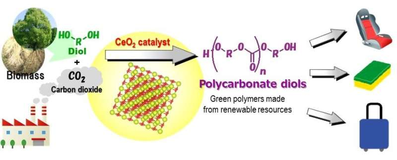 """World's first """"green"""" synthesis of plastics from CO2"""