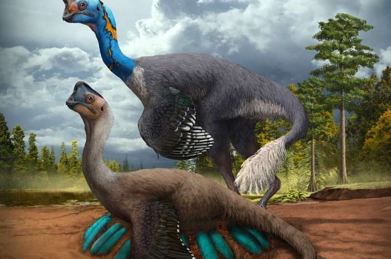 World's first dinosaur preserved sitting on nest of eggs with fossilized babies
