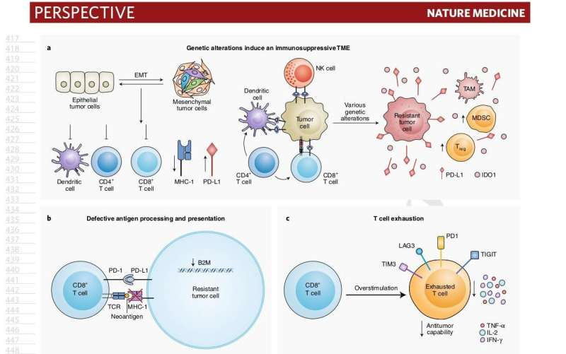 Yale Cancer Center perspective highlights new advances for NSCLC