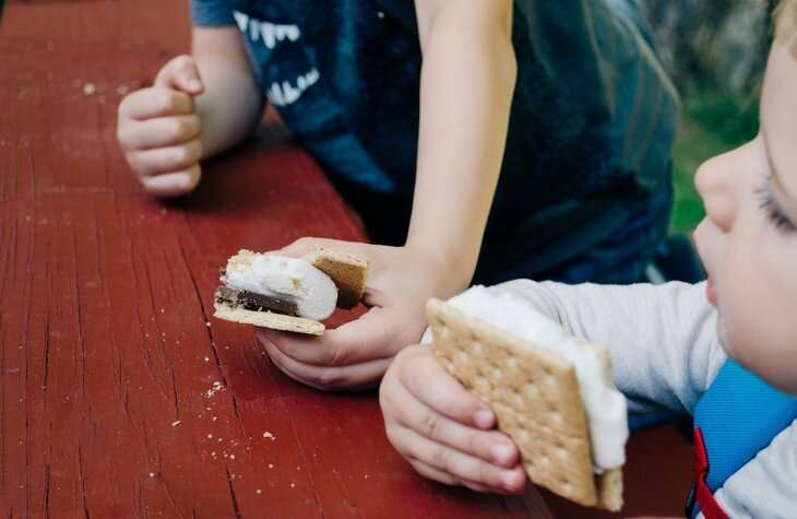 Youth obesity rates may be unaffected by income increases