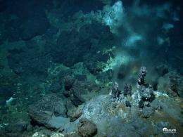 Deep-sea hot springs discovered in the Atlantic