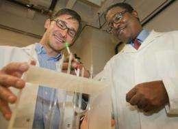 Brown University chemists simplify biodiesel conversion
