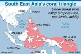 Map showing the extent of the South East Asian coral triangle
