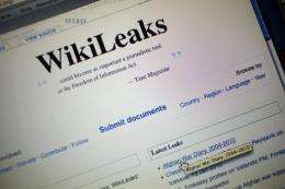 The homepage of the WikiLeaks.org website is seen on a computer