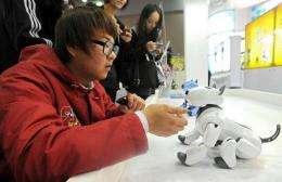 A South Korean man playing with a pet robot