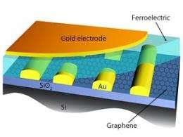 Carbon-ferroelectric memory