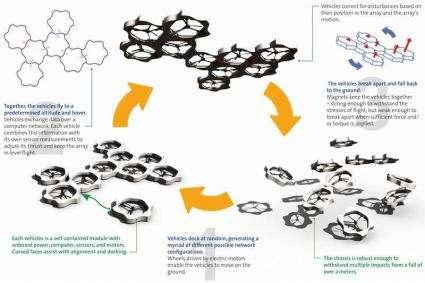 Self-assembling vehicles take flight