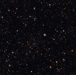 A cluster and a sea of galaxies