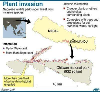 A graphic on an invasive plant infestation in Nepal's Chitwan national park