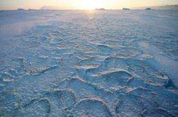 Answer to what ended the last ice age may be blowing in the winds, paper says