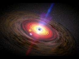 Astronomy without A telescope - black hole evolution