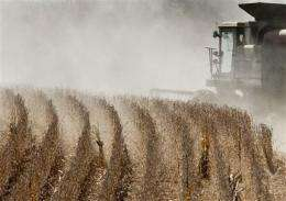 Election unlikely to change US farm subsidies (AP)