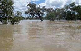 Flood waters innundate a property in southwest Queensland